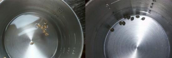 Soaking marijuana germination method