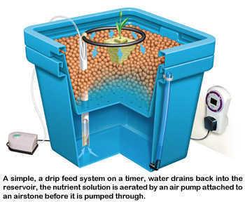 Drip Feed System