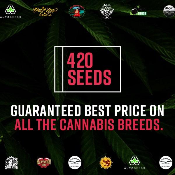 Marijuana Strain Reviews   Types of Weed   Grow Marijuana
